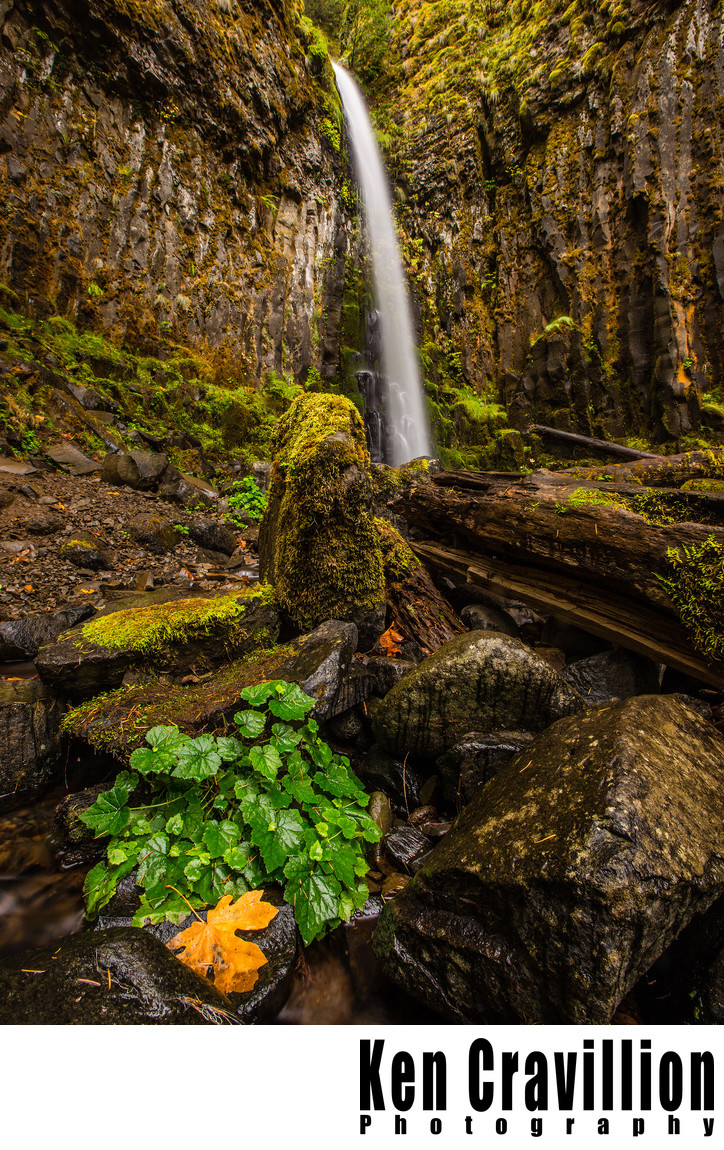 Lost Creek Falls Columbia River Gorge Oregon Photo