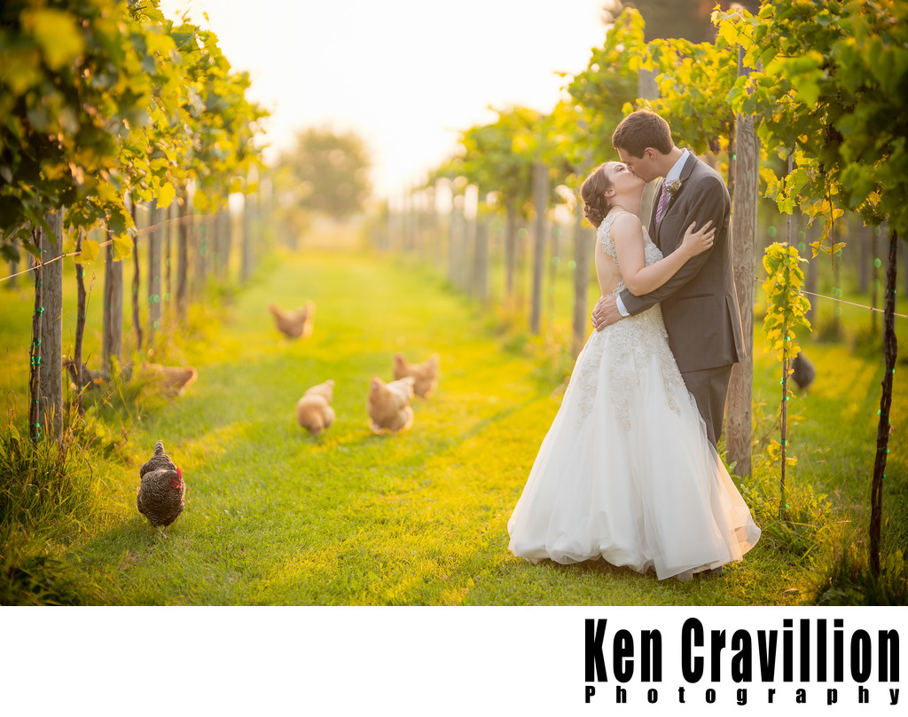 Whistlers Knoll Wedding Photo 0015