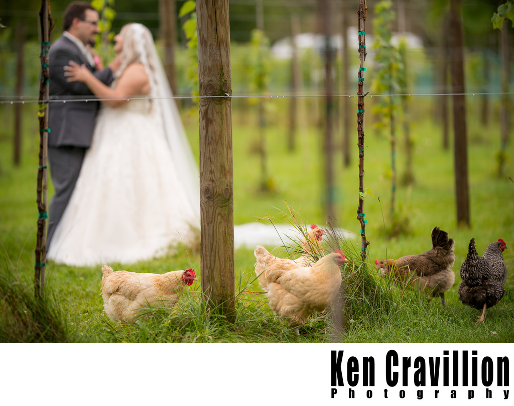 Whistlers Knoll Wedding Photo 0024