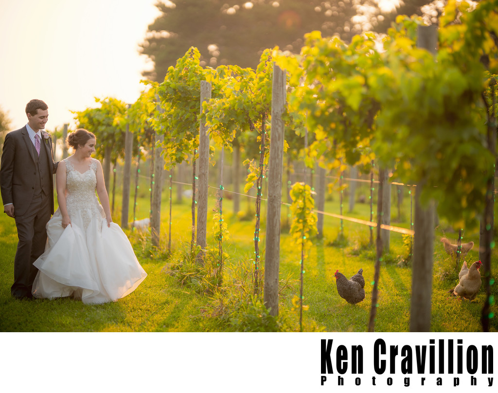 Whistlers Knoll Wedding Photo 0026