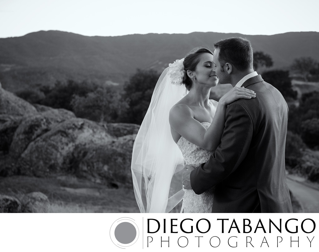 Santa Cruz Outdoor Wedding