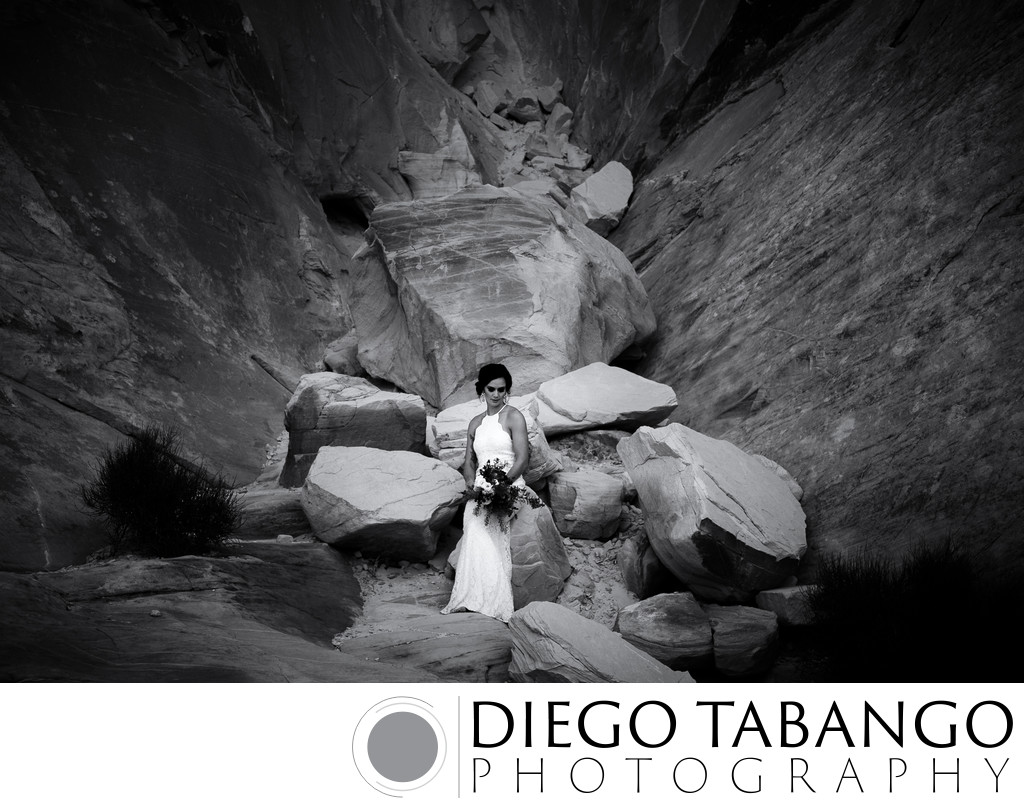 Top Bridal Portrait and Wedding Photography in Santa Cruz