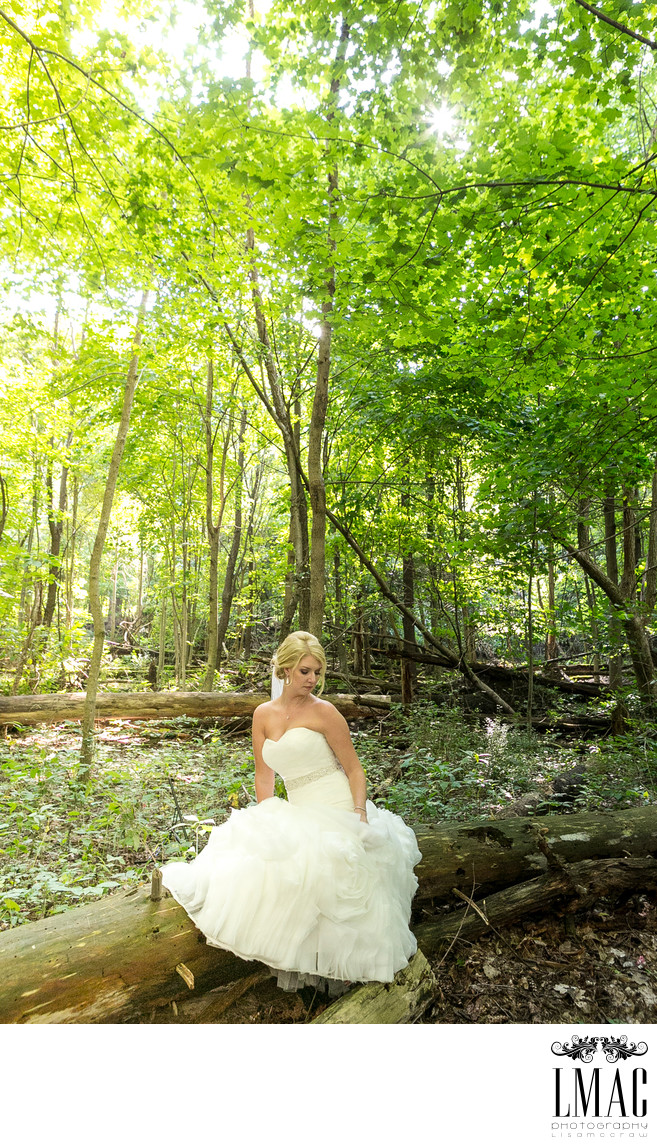 Beautiful Wedding Photography in Akron, Ohio