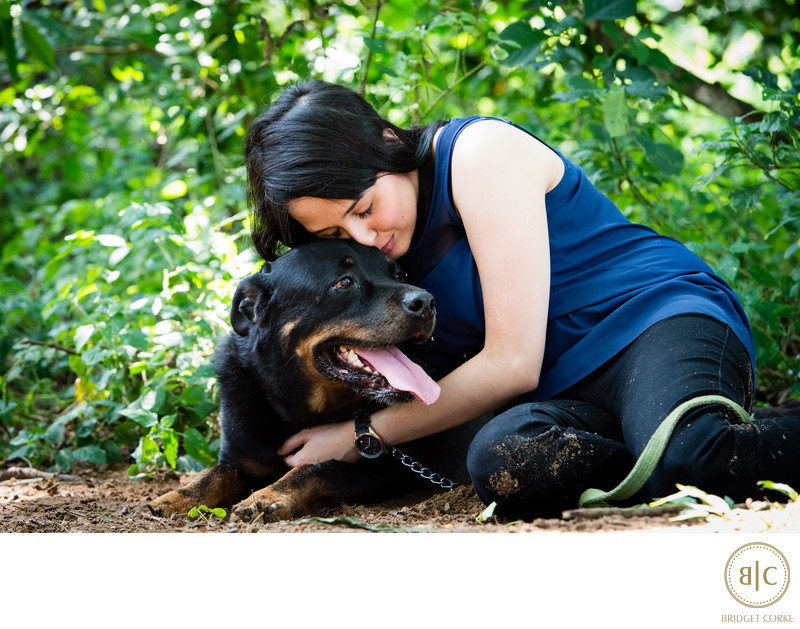 Rottweiler Pet Photographer Johannesburg