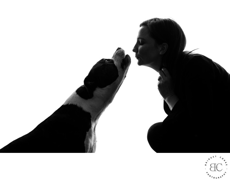 Silhoutte Johannesburg Pet Photographer