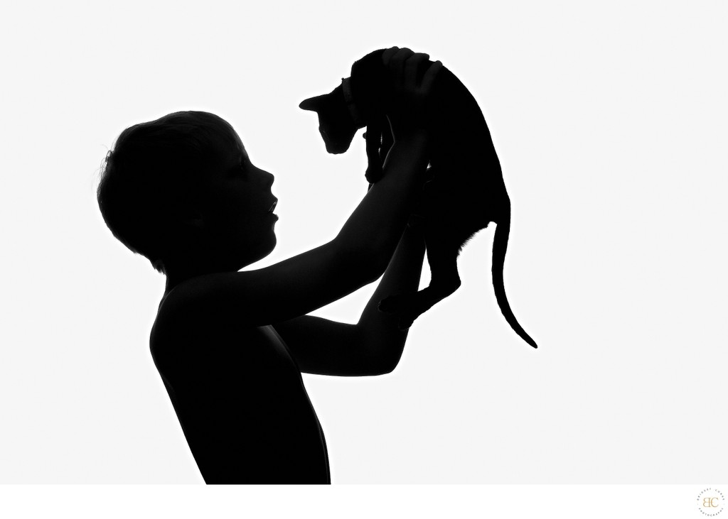 JOHANNESBURG: Cat Photographer Silhouette Idea