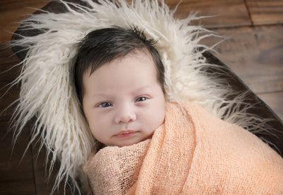 North Liberty, Iowa Newborn Photographer