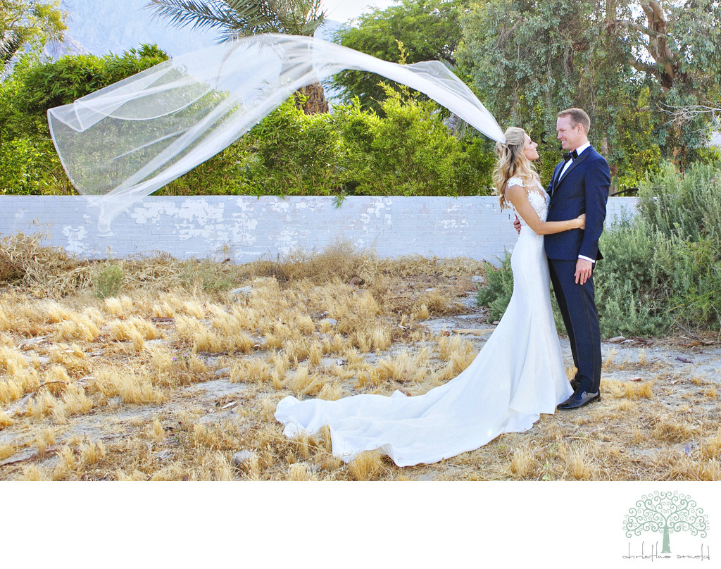 Windy and dramatic wedding day portraits Palm Springs