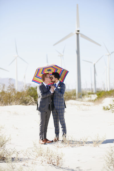 Best LGBTQ wedding photos at Palm Springs windmills