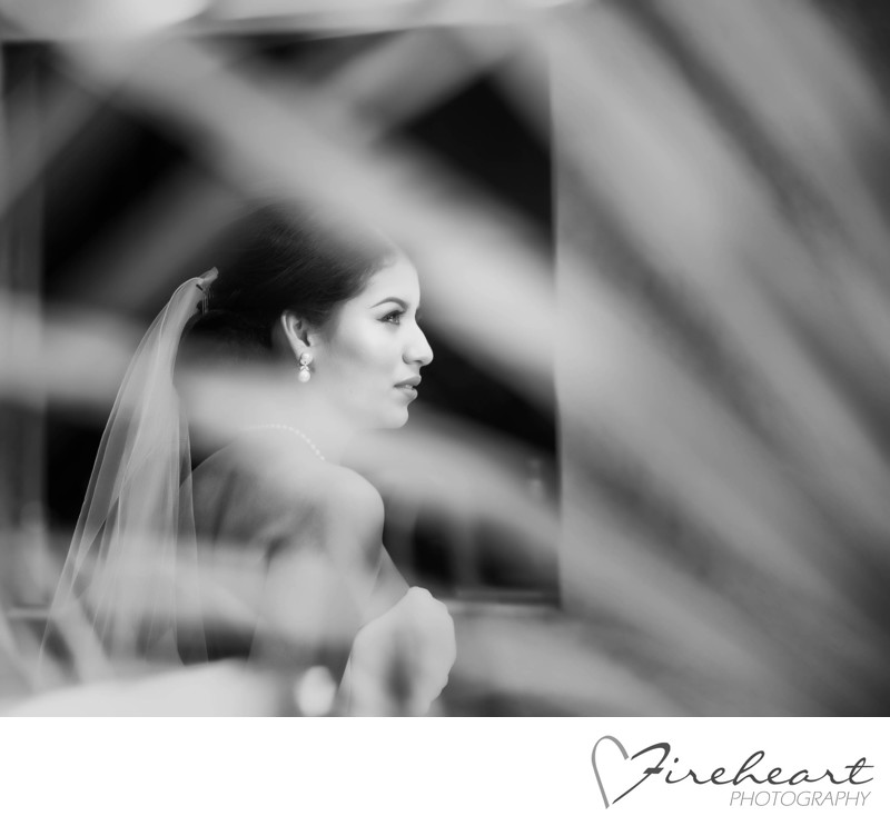 Houston Wedding photographer - Artistic Bridal Portraits