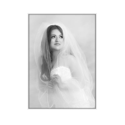 Houston wedding photographers bridal portraits