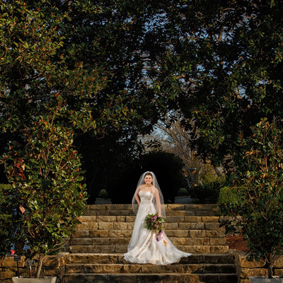 Dallas Wedding photographers - Dallas Arboretum