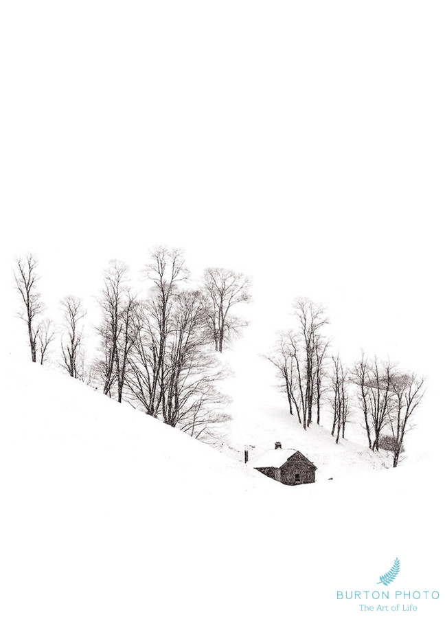 Blue Ridge Parkway Scenic Photographer Cabin in Snow