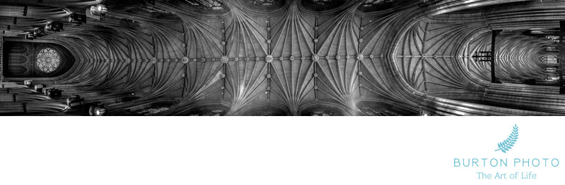 Scenic Photographer National Cathedral Ceiling