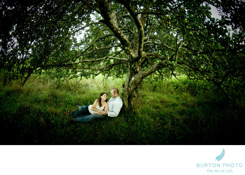 Engagement Portrait Thunder Hill Old Apple Tree