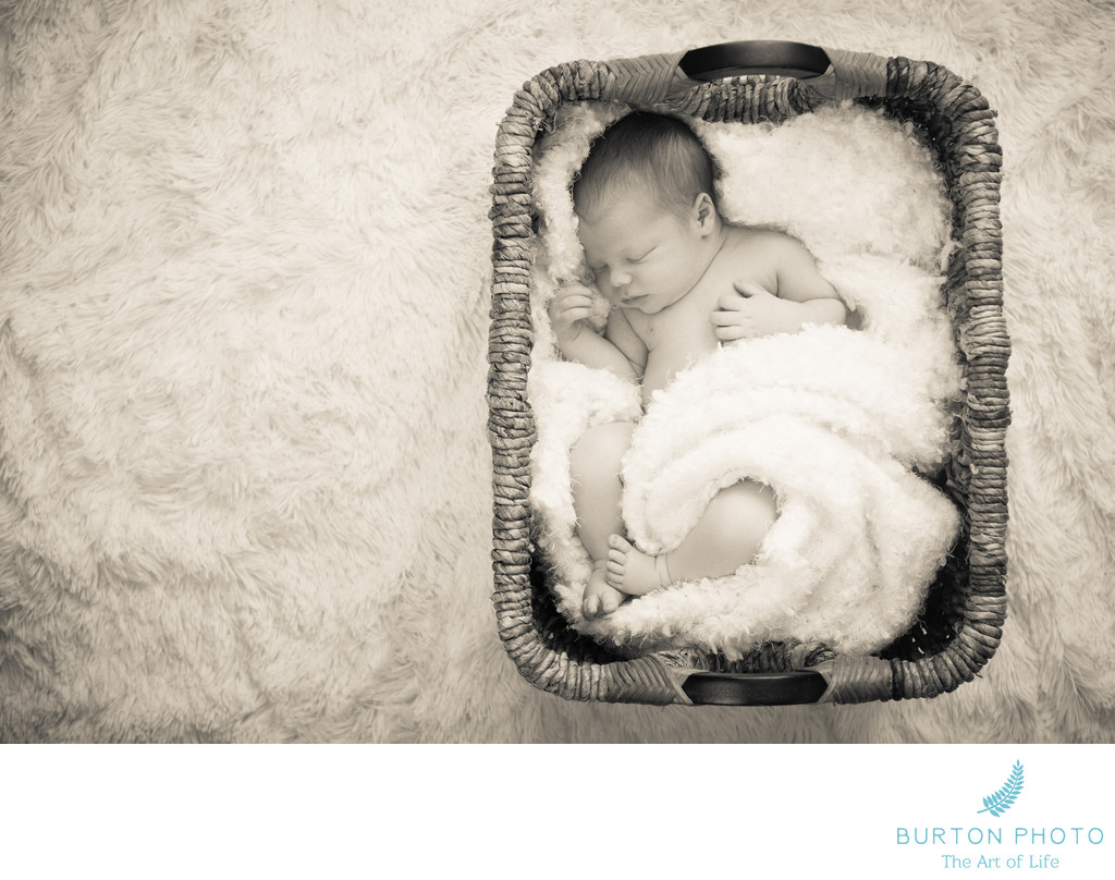 Best Newborn Baby Portrait Boone