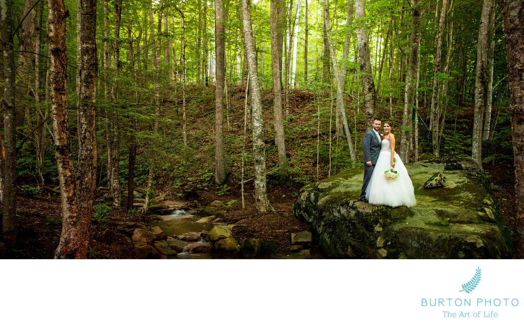Linville Ridge Wedding Photographers Belvedere
