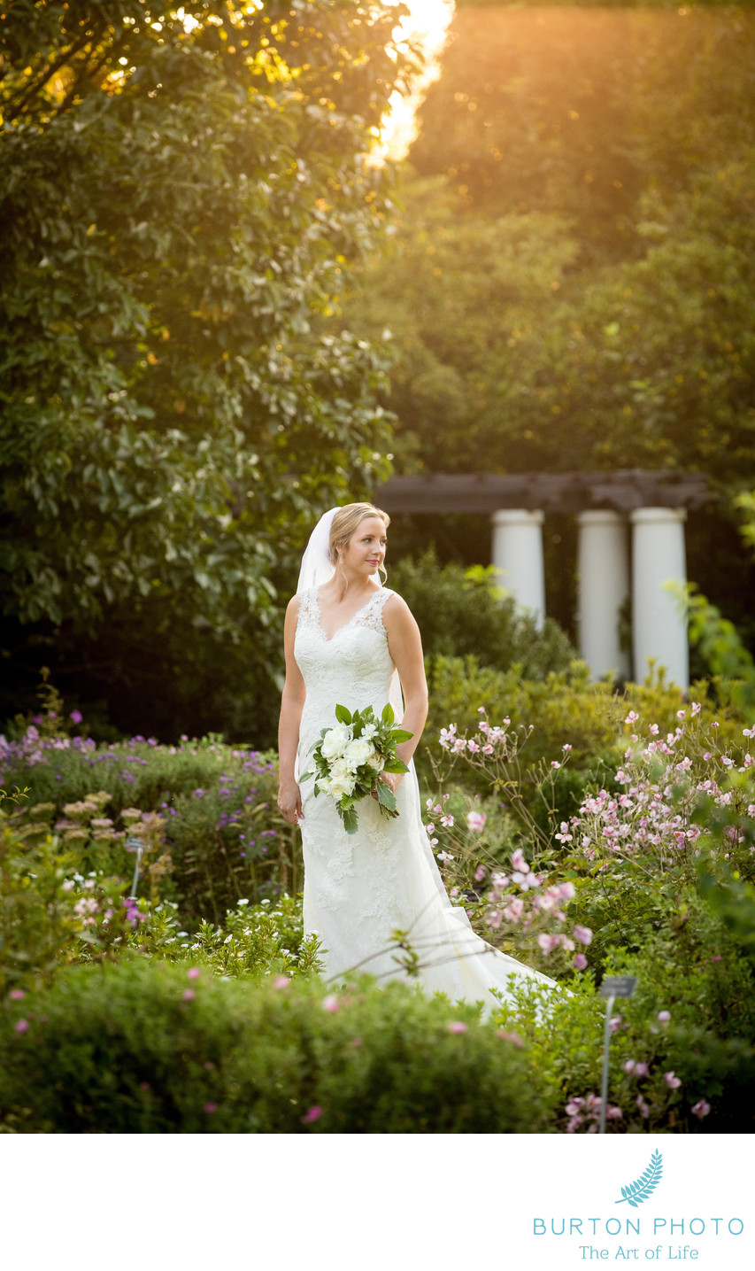 Wedding Photography for Reynolda Gardens Bride