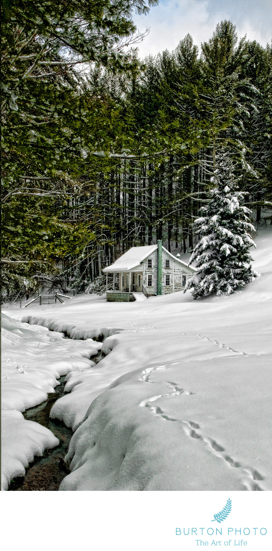 Blue Ridge Parkway Scenic Photographer Snow Cabin