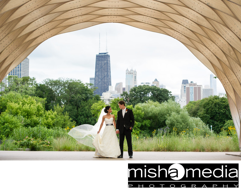 Wedding Pictures at the Honeycomb in Lincoln Park Zook