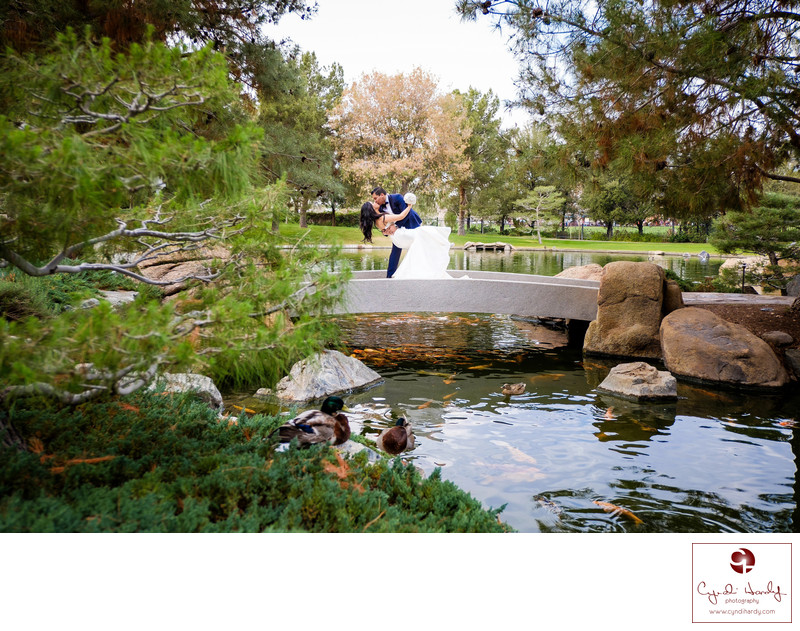 Phoenix Best Wedding Photographer