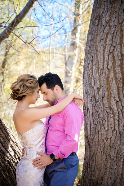 Wedding and Engagement Photographer Sedona
