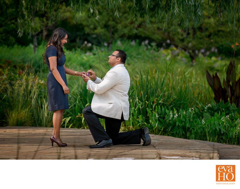 Chicago Botanic Garden Proposal