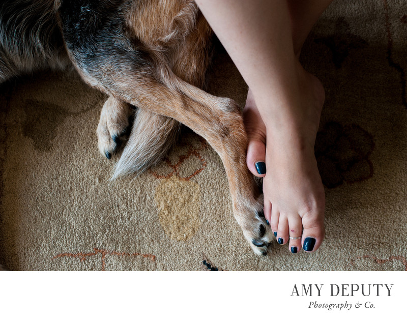 Best Family & Pet Photography in Baltimore, MD & DC
