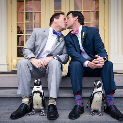Same Sex Wedding Photography at Maryland Zoo Baltimore