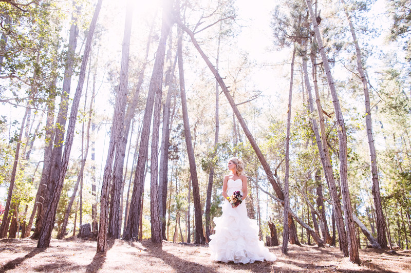Wedding Photography in Cambria California