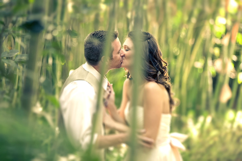 Wedding Photography at Hartley Botanica