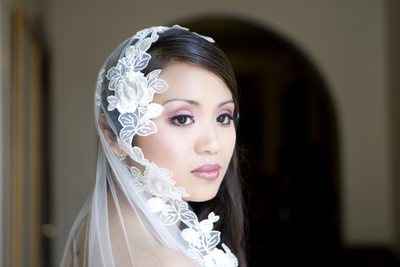 Beautiful Veiled Bridal Portrait