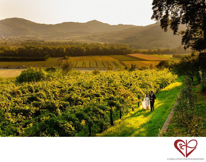 Destination Wedding Bride and Groom Photo in Vineyard