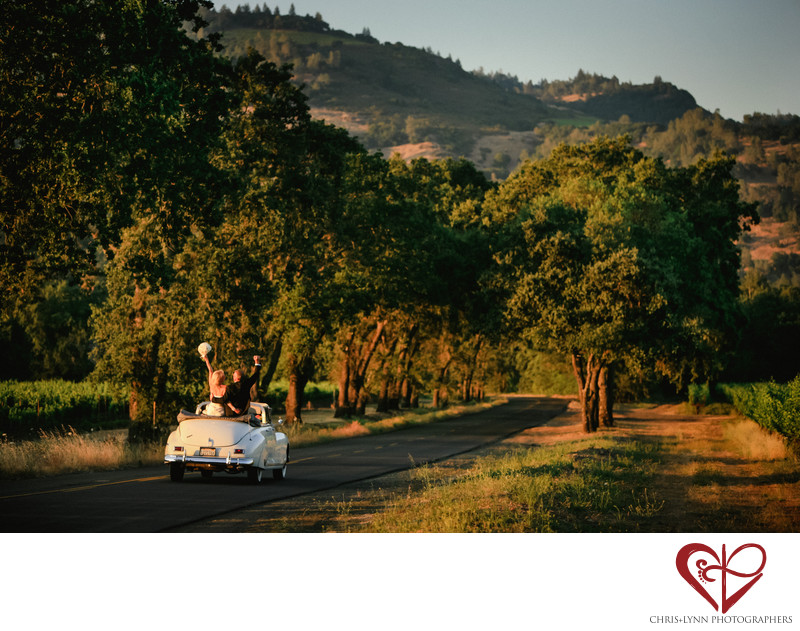 Napa Valley Wedding Photographers