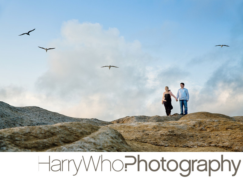 Pescadero beach engagement session Image