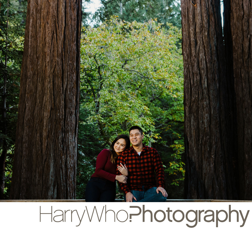 Engagement Session at Sanborn Park