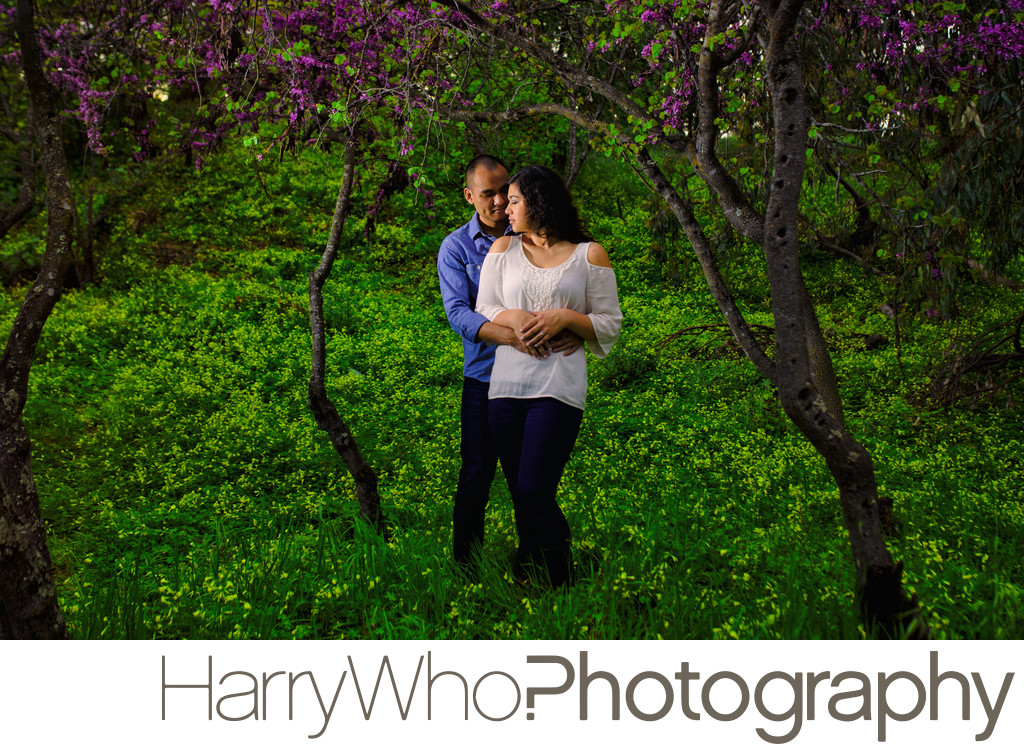 Romantic Engagemenet  photo session in Lake Vasona