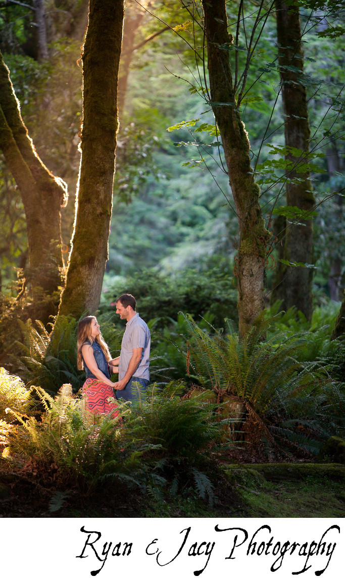 Engagement Photographers Point Defiance Park