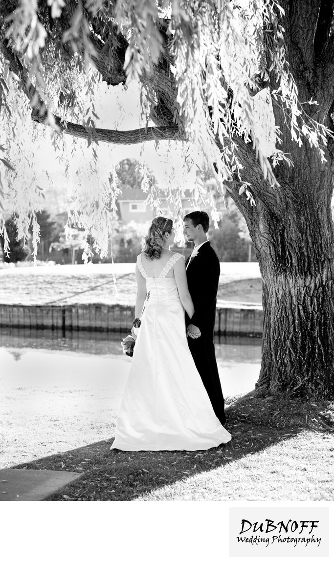 Affordable Wedding Photography.Sf Affordable Wedding Photographer Bride And Groom Under Tree