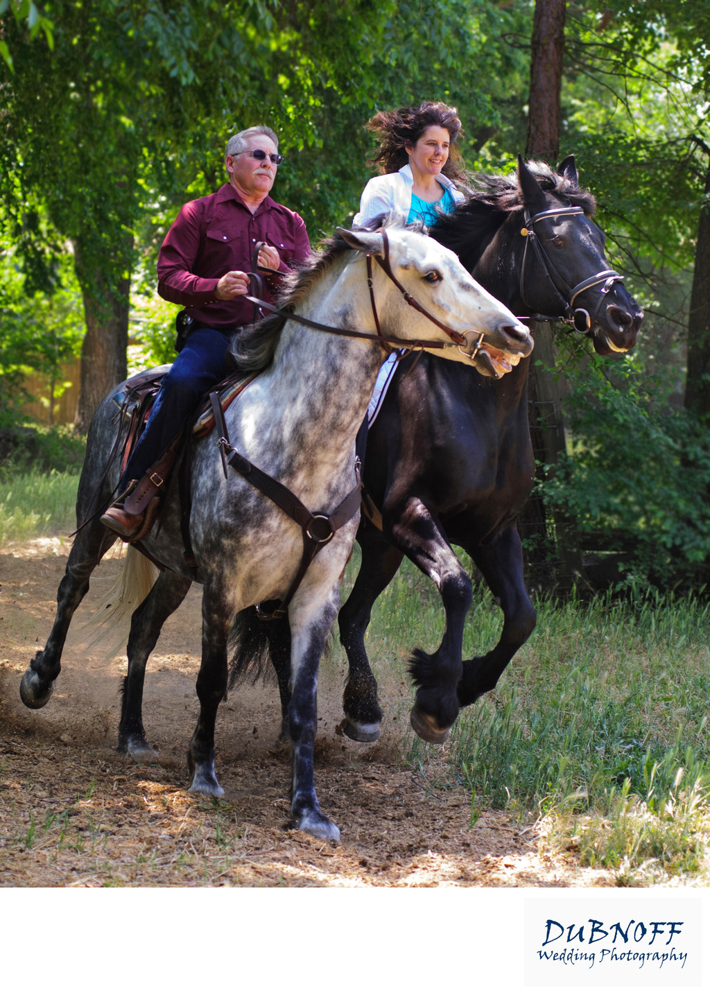 Horses Cantering During Equine Portrait Photography Session