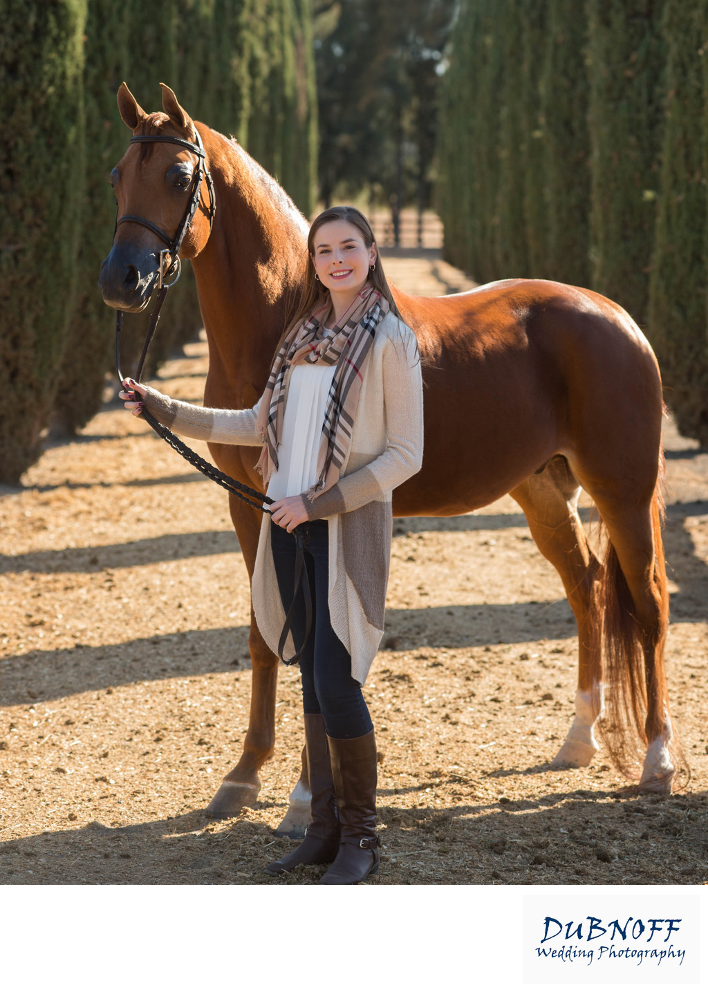 Outdoor Equine Photography in San Francisco and the Greater Bay Area