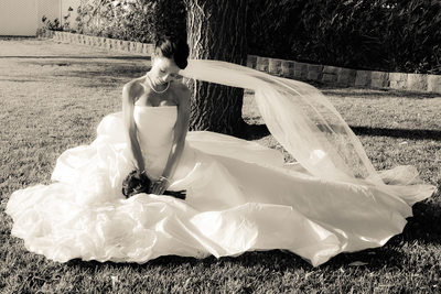 bride posing with wind blowing her veil - Brentwood, CA