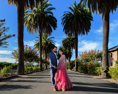 Indian Bride and Groom posing in the Palm Trees