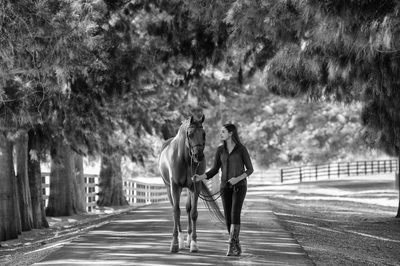 Stunning Senior Portrait Equine Image in Black and White