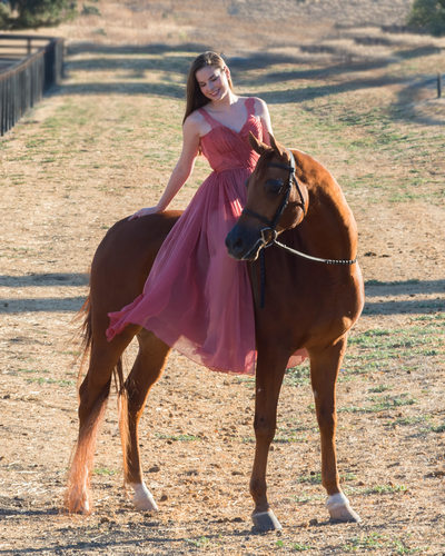 Equine Photography Portrait Session for a High School Senior in Dress
