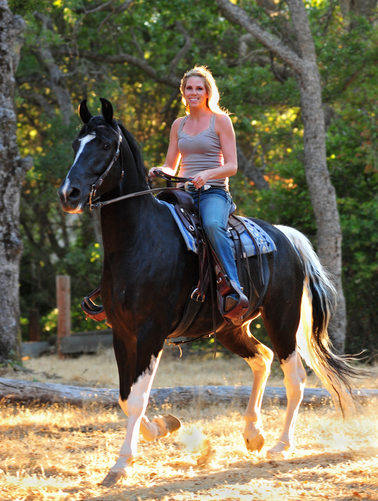 A Bay Area Equestrian riding her horse in the Sun light