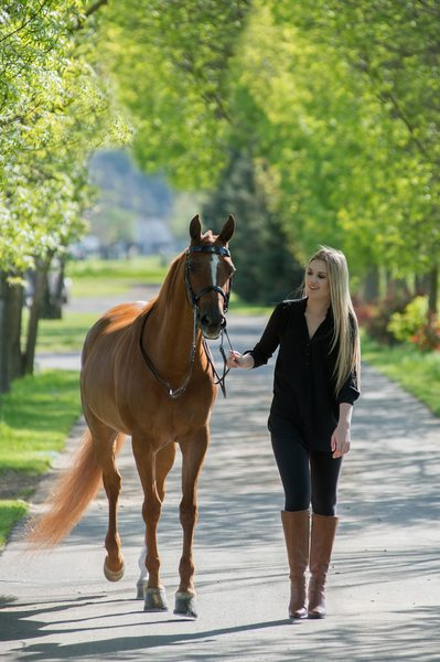 Equine High School Senior Portrait Photography Session Image