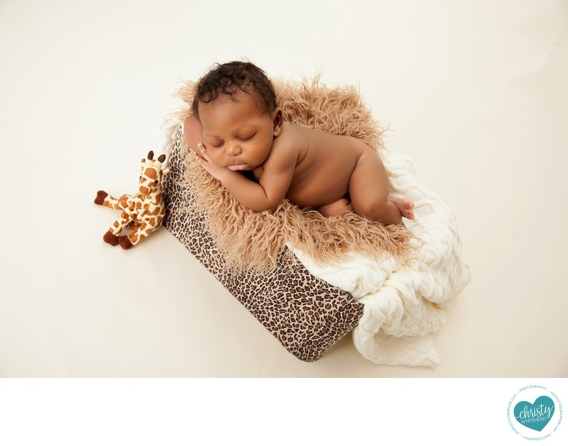 Sweet little boy on animal print with giraffe