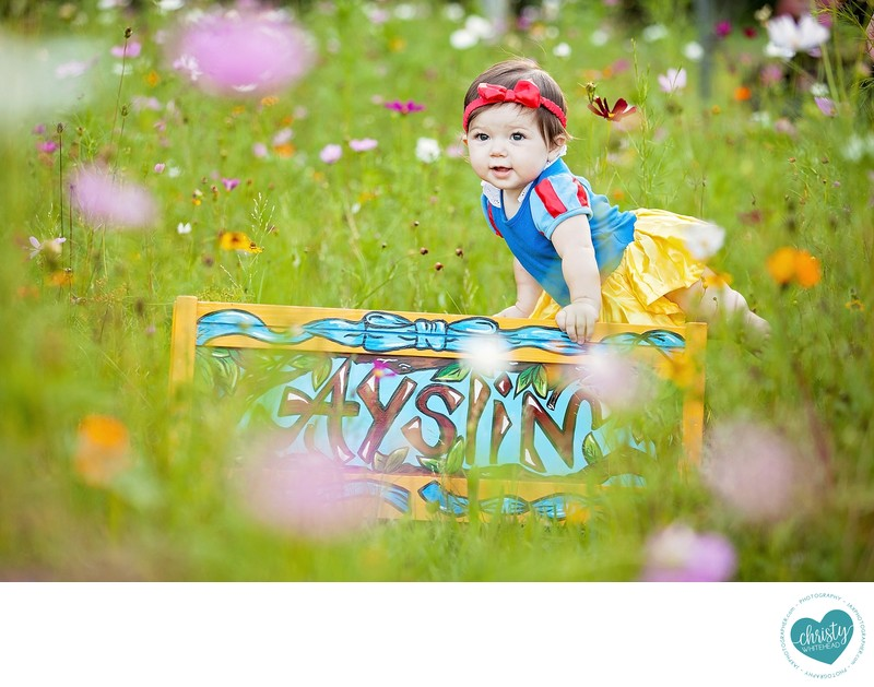 Little Girl Snow White In Flower Field Photo Shoot