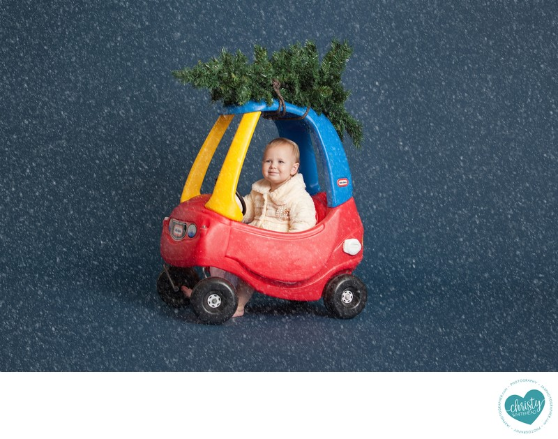 Baby In A Christmas Tree & Car Christy Whitehead